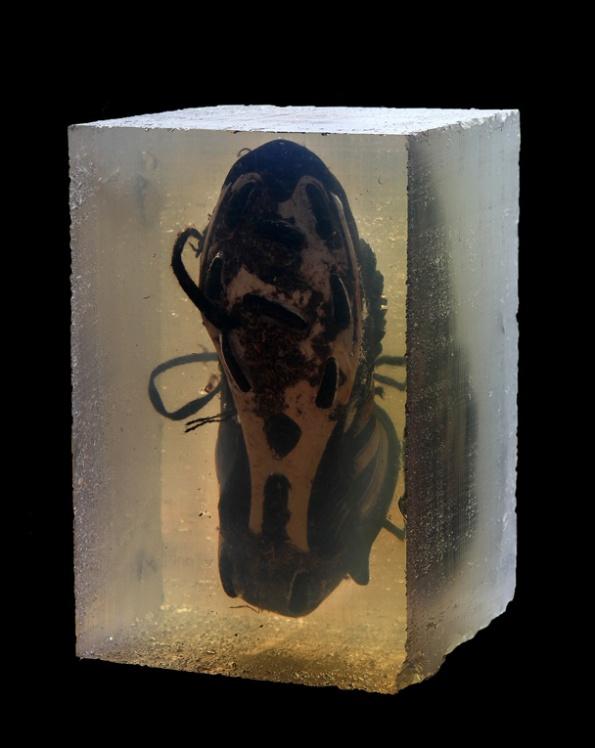 Sueños, resina transparente zapatillas de futbol - 2011.